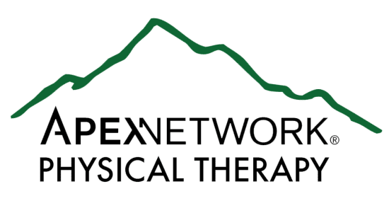 Apex network physical therapy logo new | why franchise